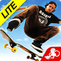 Skateboard Party 3 Lite Greg 1.5