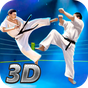 Karate Fighting Tiger 3D - 2 1.6