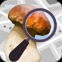Icône de Champignouf (reconnaissance automatique par photo)