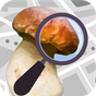 Mushroom Identify - Automatic picture recognition 2.17