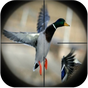 Duck Hunting Calls 2.0