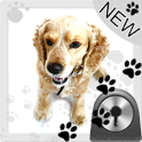 Cute Dog v2 - GO Locker Theme icon