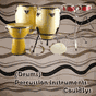 Percussion Instrument 4.1