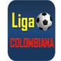 Futbol Colombiano 1.0 APK