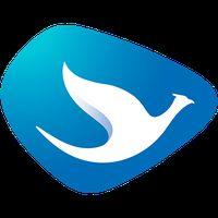 Ikon Blue Bird MDT Driver 2.0