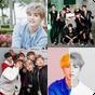 BTS'yi ne kadar iyi tanıyorsun?  APK