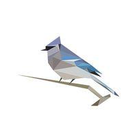 BirdNET: Vogelstimmen einfach erkennen Icon