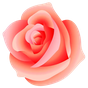 WAStickerApps - Flowers  APK