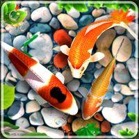 Biểu tượng Hình nền cá sống 2019: Cá koi nền