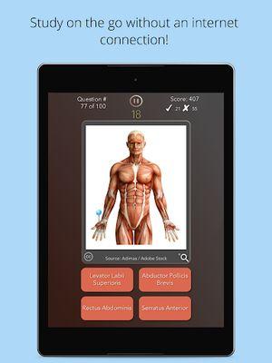 Picture of Anatomist - Anatomy Quiz Game