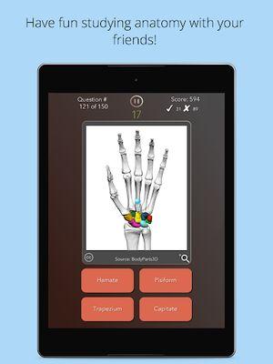 Image 13 of Anatomist - Anatomy Quiz Game