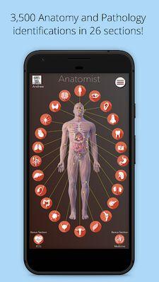 Image 12 of Anatomist - Anatomy Quiz Game