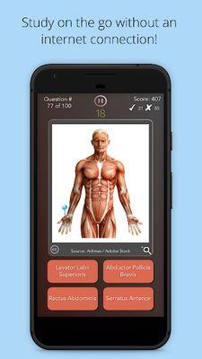 Image 10 of Anatomist - Anatomy Quiz Game