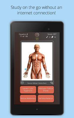 Image 5 of Anatomist - Anatomy Quiz Game