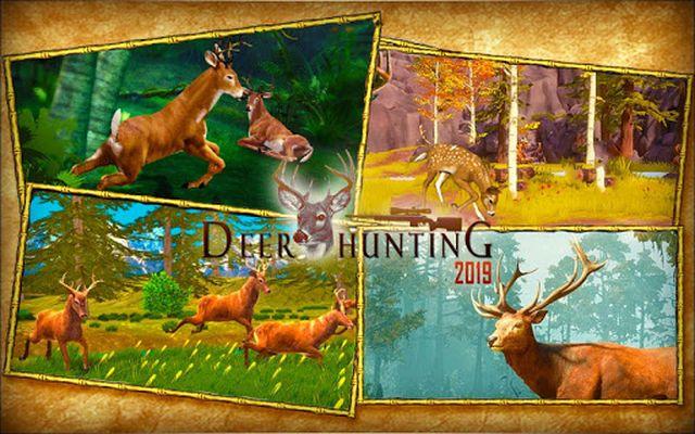 Image 6 of Deer Hunting 2017