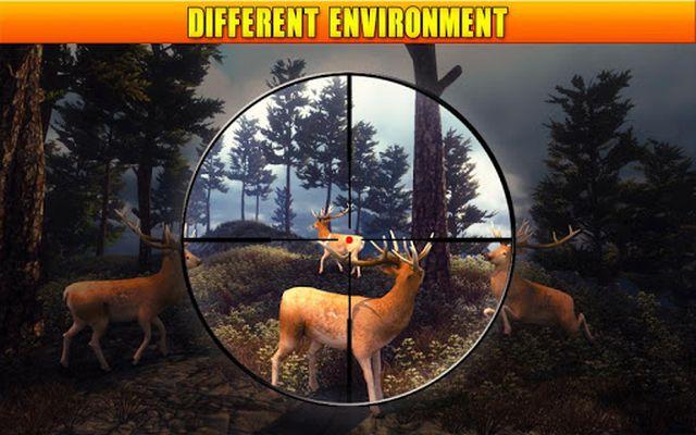 Image 4 of Deer Hunting 2017
