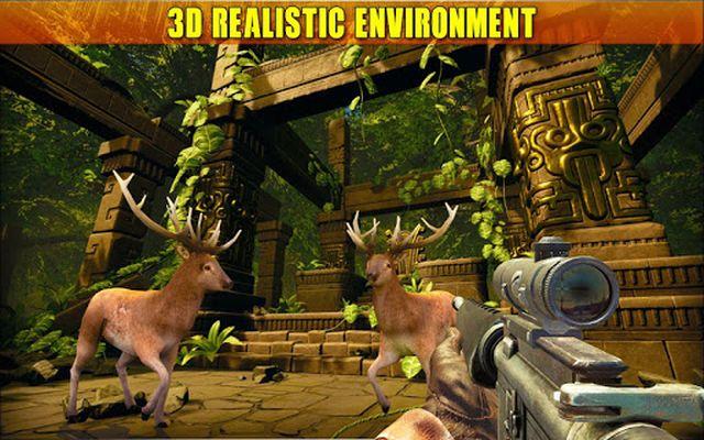Deer Hunting Video 2017