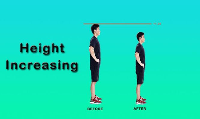 Image 2 of Height Increase Exercises
