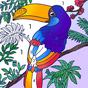 Color.ly - Nombre dessiné, couleur par nombre
