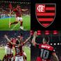 Noticias do Flamengo  APK