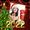 Molduras de saudações de Natal de ano novo de 2020