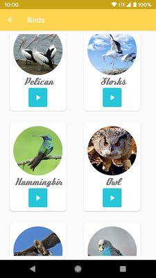 Picture 9 of Animal Ringtones - Ringtones