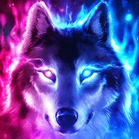 Ícone do apk Lobo papel de parede HD