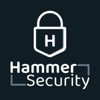 Hammer Security icon