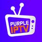 IPTV Smart Purple Player - No Ads