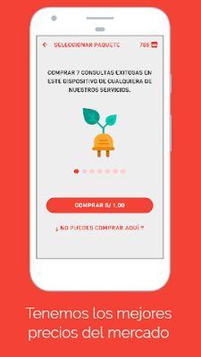 Image 3 of Consulta Peru