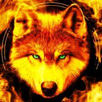 Fire Wallpaper and Keyboard - Lone Wolf Simgesi