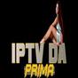 primabox  APK