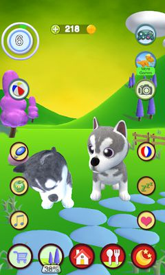Image 7 of Talking about the Husky dog