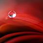 물방울 라이브 배경화면 2.5