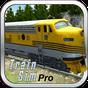 Train Sim Pro