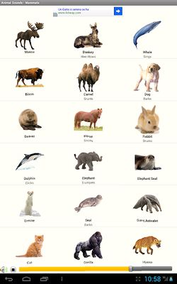 Image 5 of The Verses of the Animals