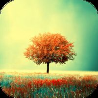 Biểu tượng Awesome-Land : Beautiful Nature Live wallpapers
