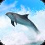 Golfinhos em 3D