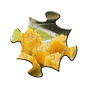 Jigsaw Puzzles 1.9.9
