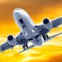 Flight Simulator Rio 2013 Free