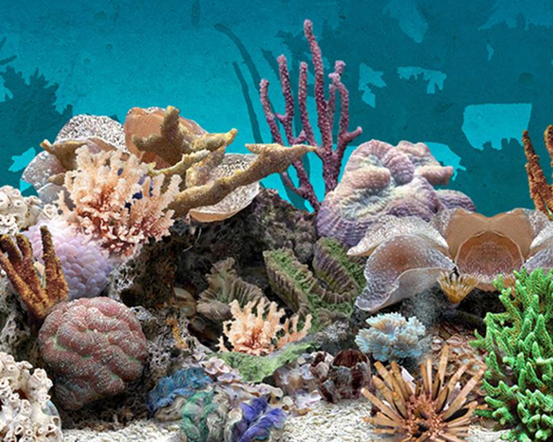 3d Aquarium Live Wallpaper Apk Free Download App For Android