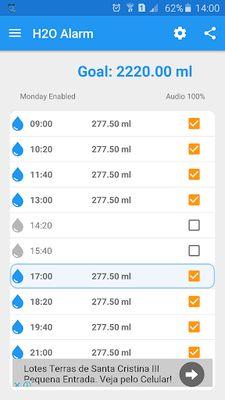 Video of H2O Alarm