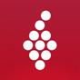 Vivino: Scanner de vinho