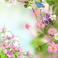 Çiçekler Canlı Duvar Kağıdı Simgesi