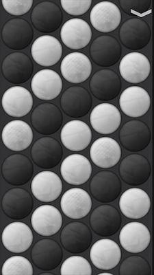 Button Accordion Image 2