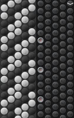 Button Accordion Image 1