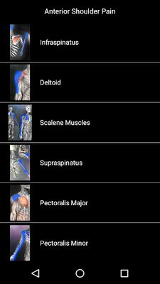 Image 1 of Muscle Points Anatomy