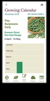 Image 14 of Garden Time Planner by Burpee