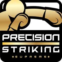 Icono de Precision Boxing Coach Supreme