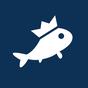 Fishbrain Rede Social Pescaria